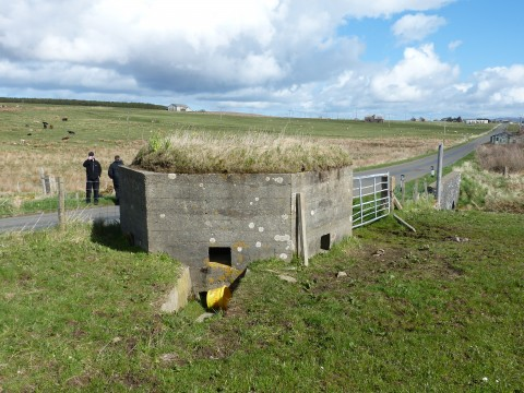 ND39SW 44 - Ore Brae Type 22 Pillbox